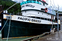 _MWB6812-Pacific Grizzly